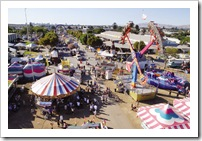 san-diego-county-fair